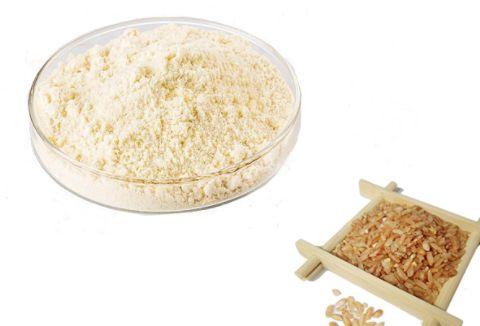 Brown rice nutrition Rice protein powder manufacturer | ETchem