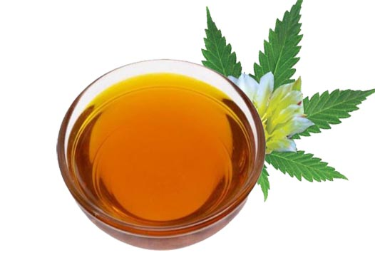 CBD Oil Manufacturers Suppliers Private Label wholesalers