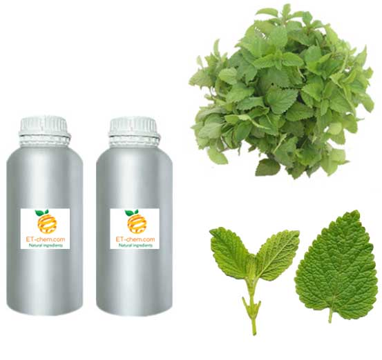 lemon balm oil - etchem