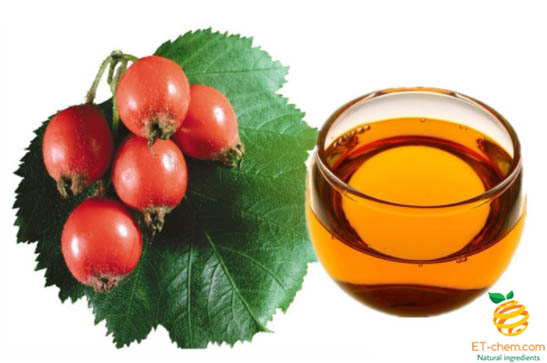 Rosehip oil manufacturer,rosehip essential oil supplier-ETchem